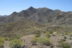 Araby-Palm Springs06