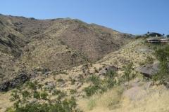 Araby-Palm Springs10