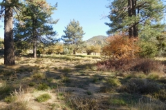 Fobes Trail-Garner-05