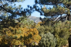 Fobes Trail-Garner-06