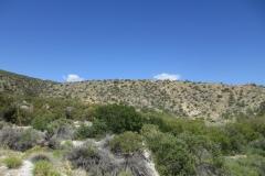 Horsethief Creek-Garner-01
