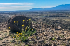 Indio Badlands-Indio-02