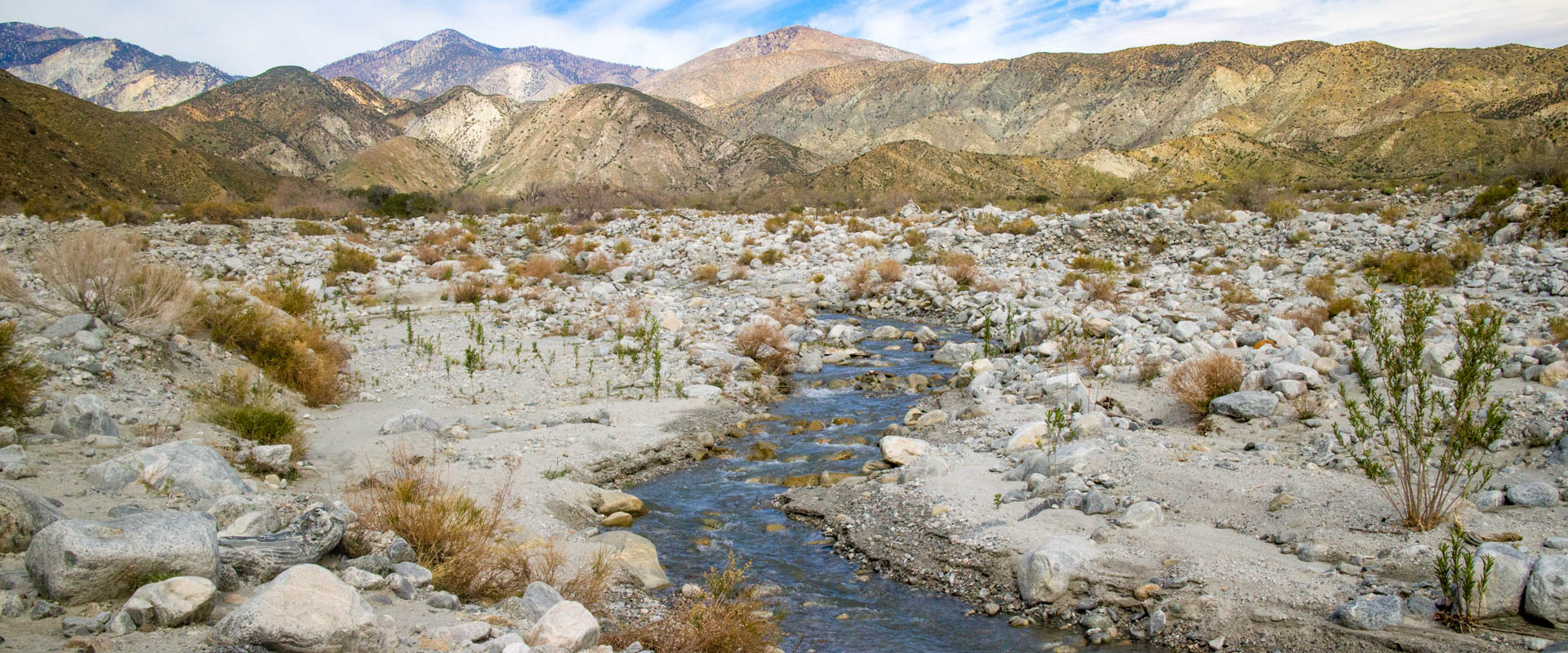 Discover the beauty of the Coachella Valley and Beyond